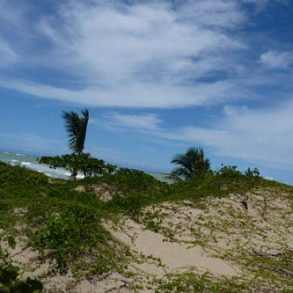 One of the last beachfront parcels in Cabarete