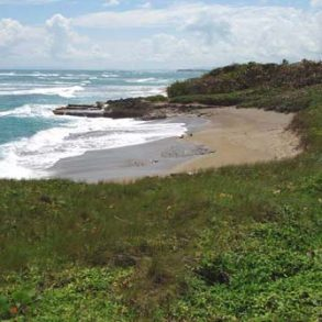 Prime beachfront land with 94 acres in Cabarete for sale